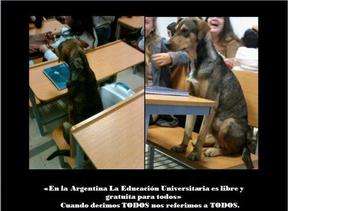 Estudiante Aplicado