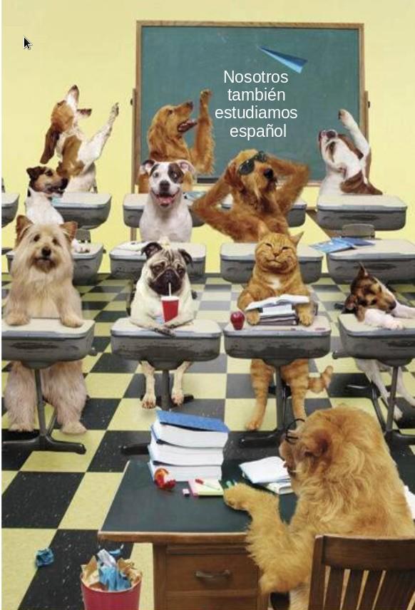 Estudiantes Caninos de Español